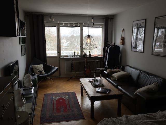 Roomy 38 m2 apartment near downtown Lund - Lund - Leilighet