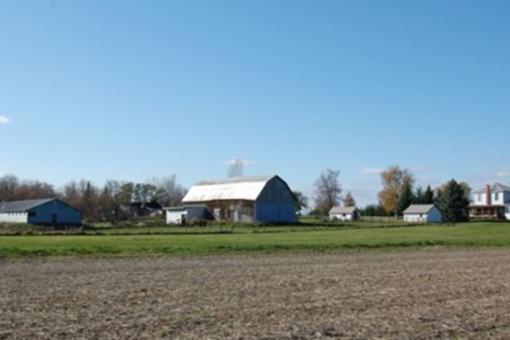 from the right to the left, the house, the garage, the old milk house, the barn, the old pig barn