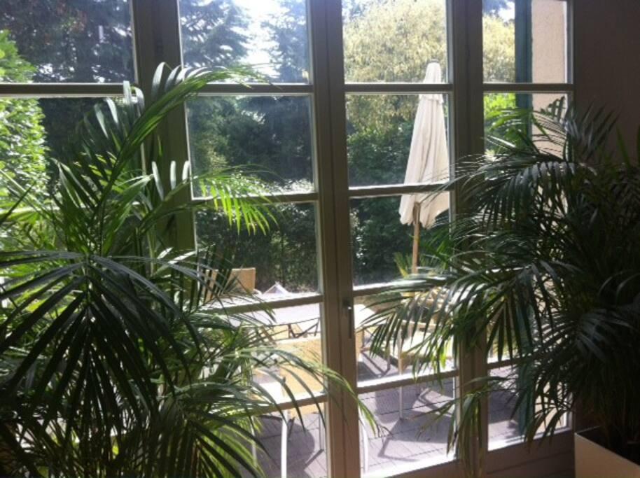 Terrasse et jardin extérieur (env70m²)