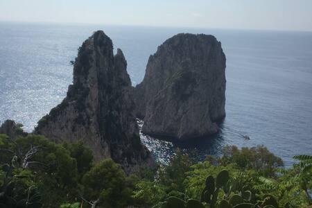 CAPRI Affittasi Monolocale servizio alberghiero - Capri