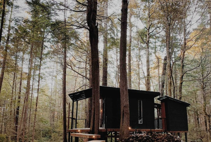 Forest Camping Hut