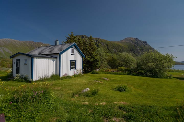 Charming cottage in Lofoten - Bøstad - Cabin