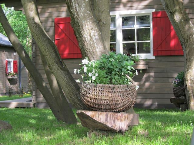Summerhome 2 (Saulkrasti - Skulte)