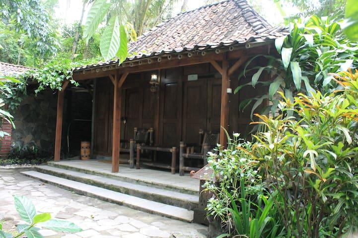 homestay omahe simbok desa wisata pentingsari