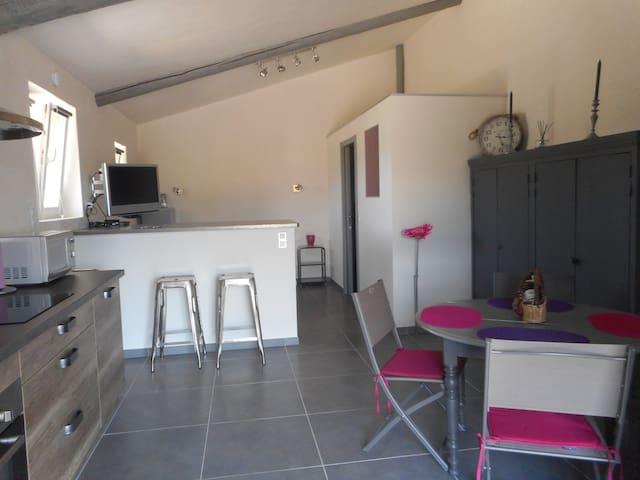 loft confort  au calme de la campagne proche sites - Cabrières-d'Avignon - Loft