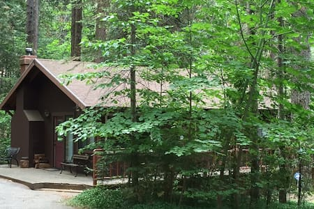 Cozy Forest Cabin Near Nevada City - Nevada City