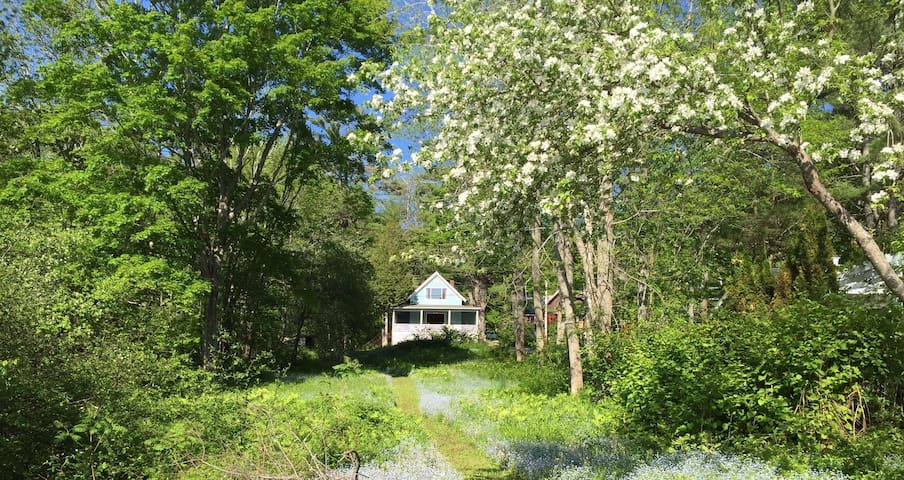 Cottage on Maine's Penobscot River - Verona Island - House