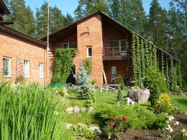 дом в лесу на берегу Рудаковского озера - Priozerskiy rayon