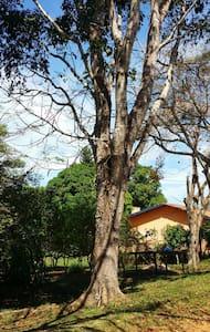 Fazenda na Amazônia
