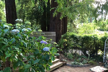 Privacy, Sunshine & Redwood Trees! - Larkspur