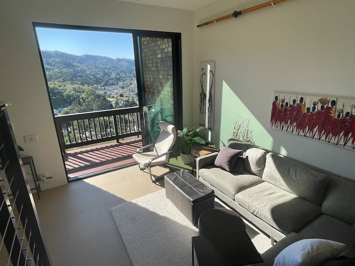 Sausalito modern townhome, Mill Valley Views