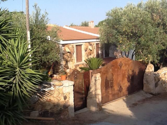 villa con giardino - San Teodoro - Villa
