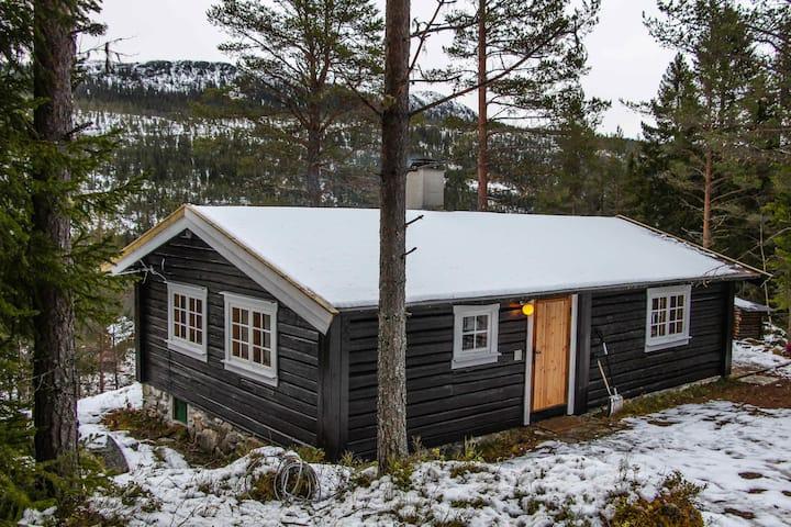 Trivelig laftet hytte, usjenert beliggenhet