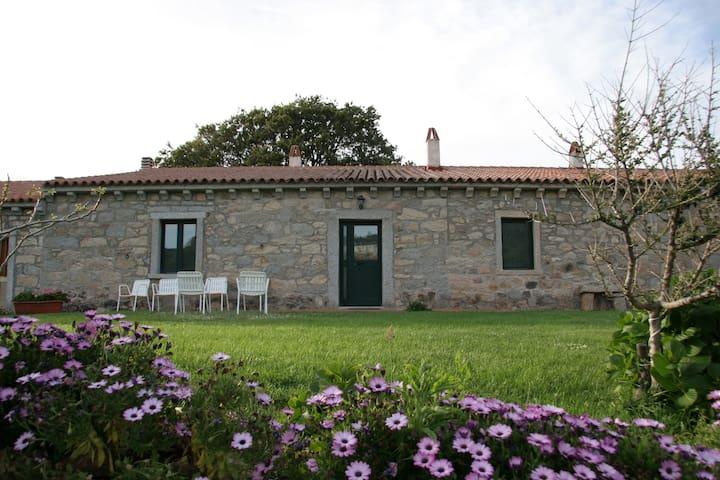Stazzo Concasoni-Villa-Casa Tipica - Luogosanto - Talo