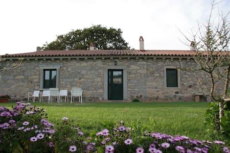 Stazzo Concasoni-Villa-Casa Tipica - Luogosanto - Rumah