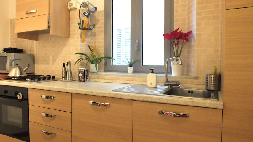 Modern fully equipped kitchen - shared
