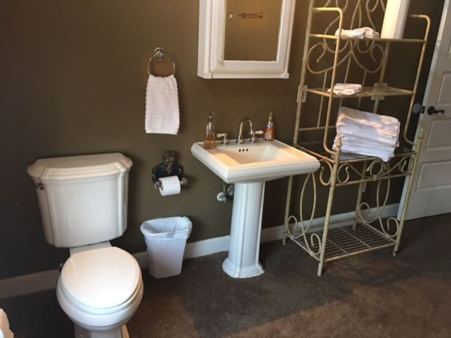 Large bathroom towels provided with shower and tub