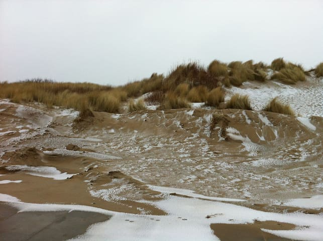 Dünen am Nordseestrand im Winter