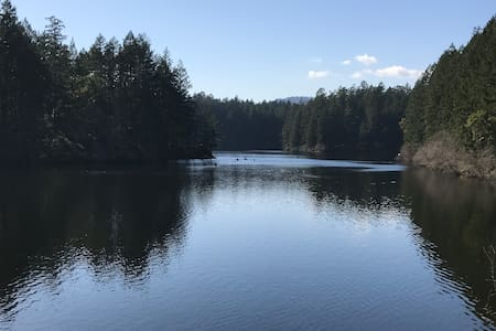 Forest Retreat at Thetis Lake