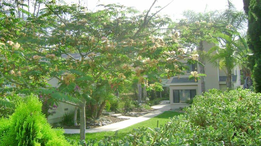 Jungle home minutes to many San Diego Attractions! - San Diego - Hus