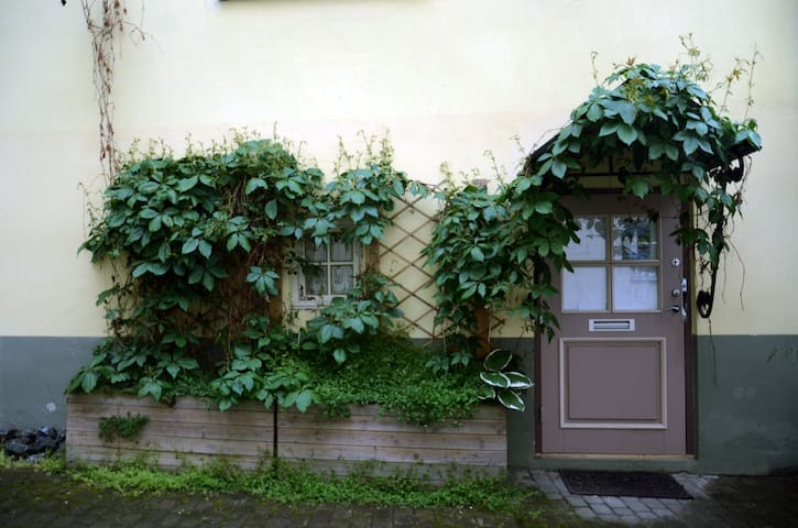 Cozy studio in the Old Town