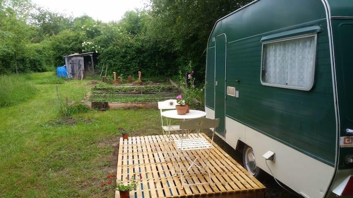 Tasteful caravan with terrace