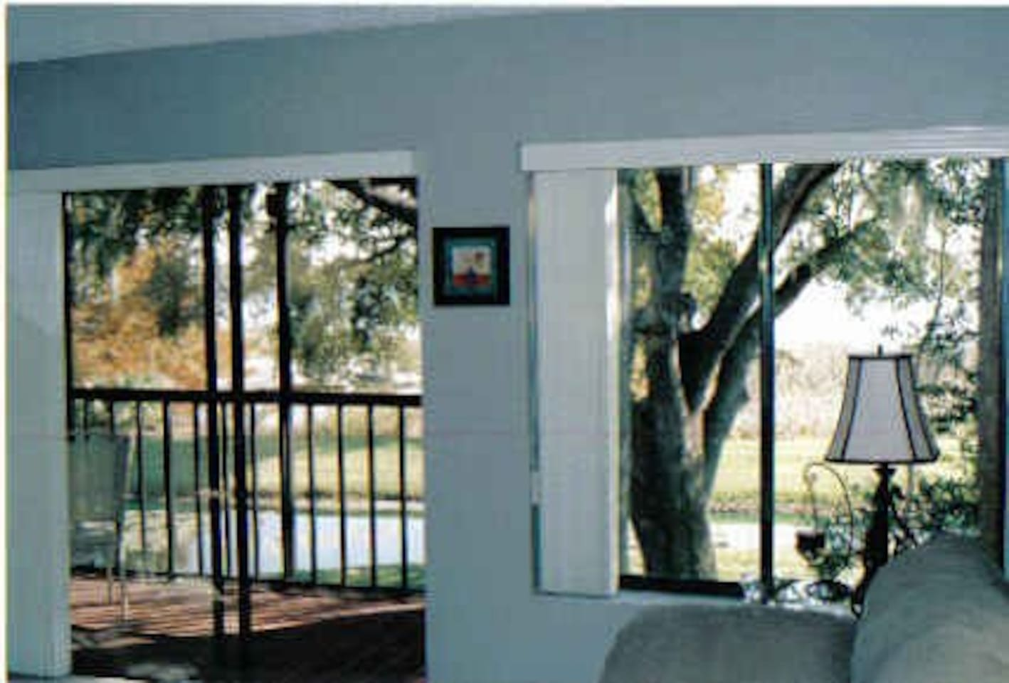 View of pond & Lake Lulu from living room