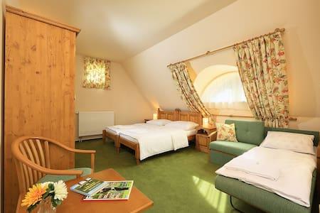 Penzion Golf - Sudoměřice u Bechyně - Bed & Breakfast