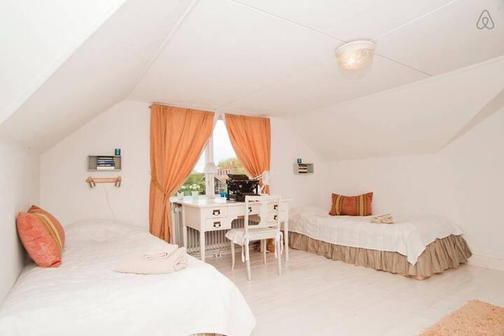 Two singlebedroom attic
