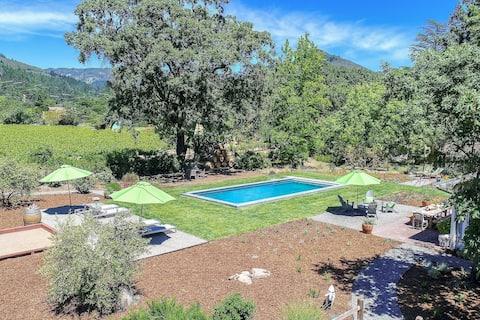 Sonoma Vineyard Home With Pool & Stunning Views