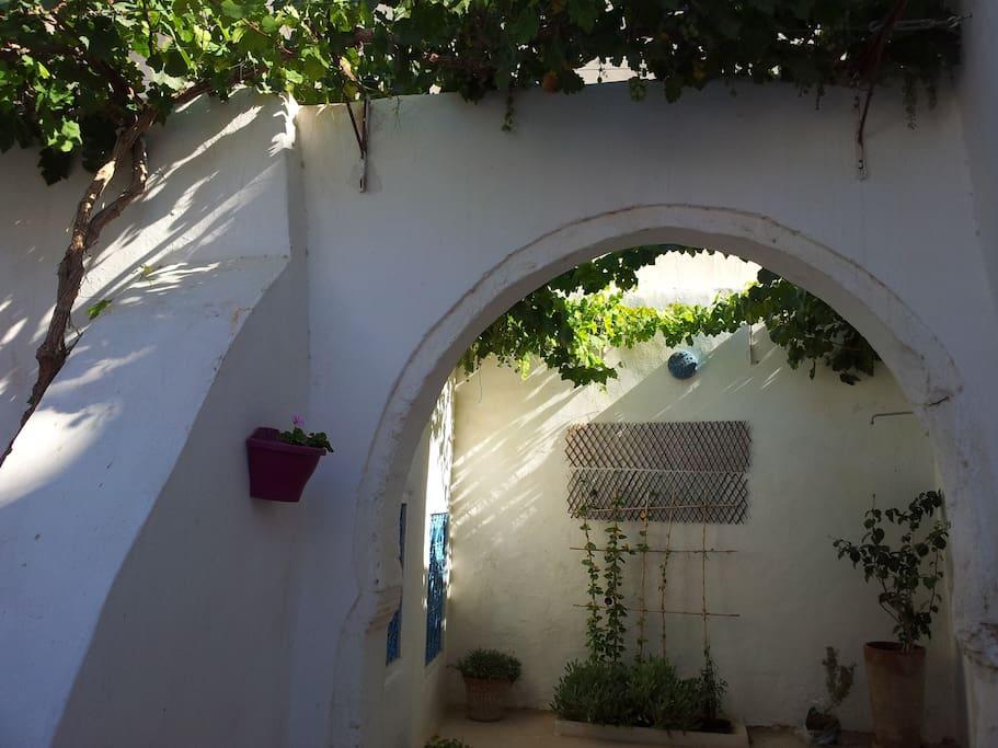 Petit patio à l'entrée de la maison avec vigne