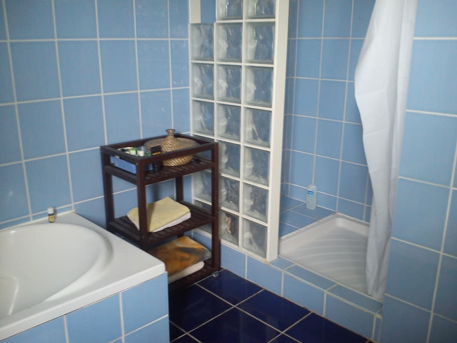 salle de bain équipée d'une douche et d'une baignoire.