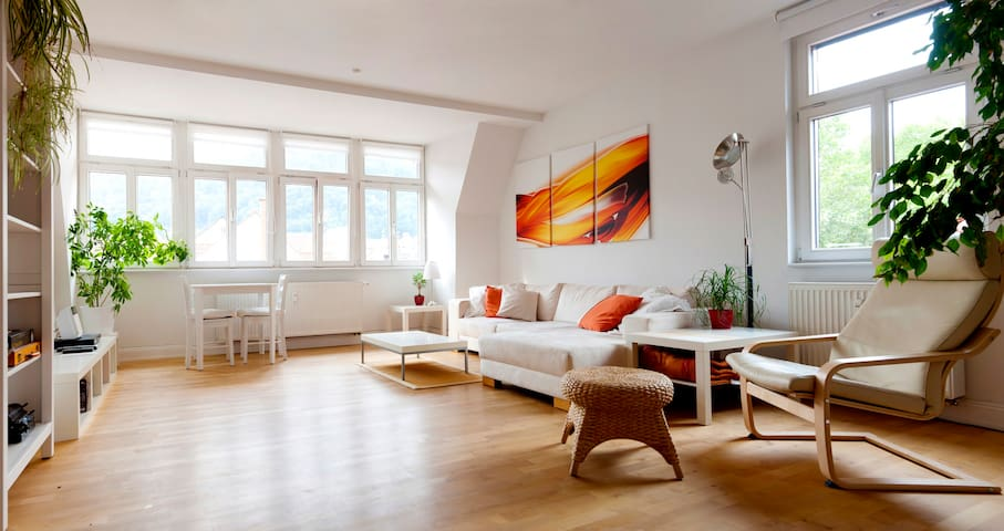 Wunderfull Apartment down town - Heidelberg - Daire