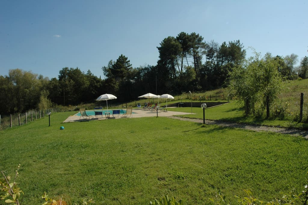 lawns around the pool