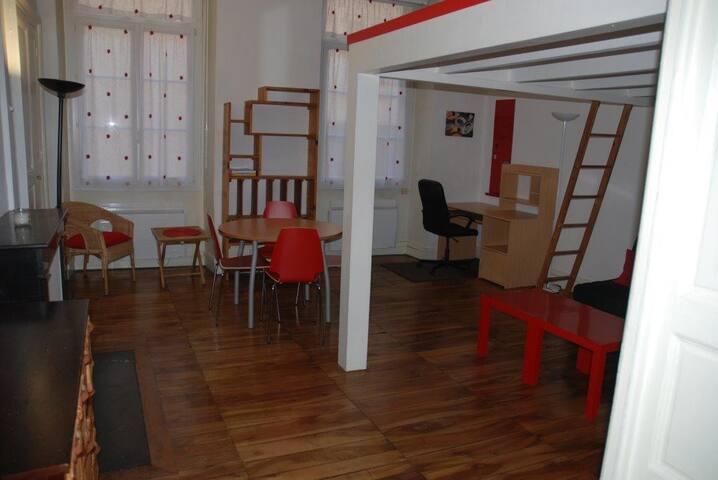 Lovely apartment historical downtwn - Grenoble - Apartament