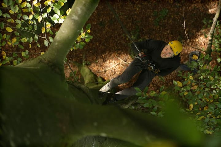 Baumübernachtung - Hauptikon - Casa sull'albero