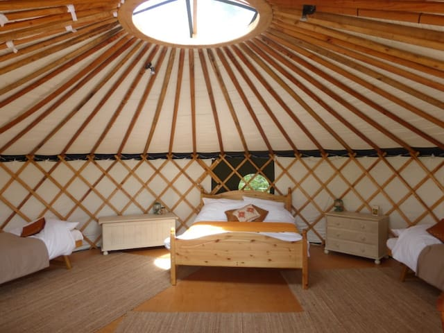 'Chestnut' Yurt in West Sussex - Fernhurst