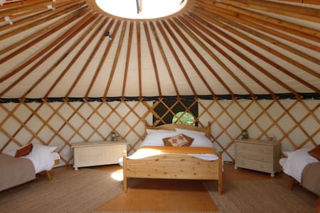 'Chestnut' Yurt in West Sussex - Fernhurst - Jurta