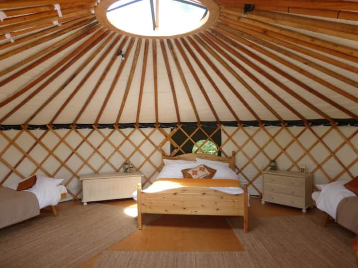 'Chestnut' Yurt in West Sussex countryside