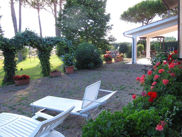 giardino con lettini