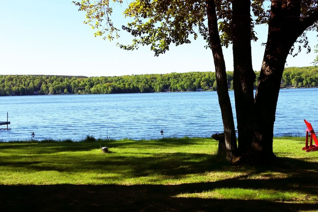 Cottage faces south over Lower Buckhorn lake and is in a low boat-traffic area.