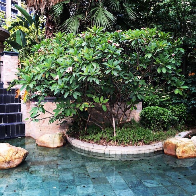 花园式高档小区,度假村环境。