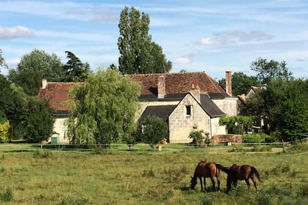 Ideal Loire Valley close VILLANDRY CHATEAU - Berthenay - Bed & Breakfast