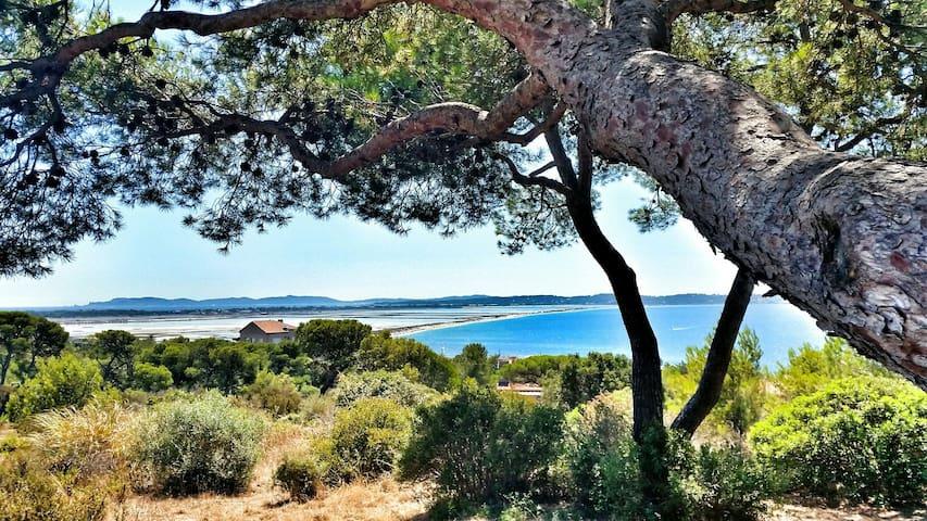 Accès privé plage & vue mer dans parc 3 hectares - Hyères - Huoneisto