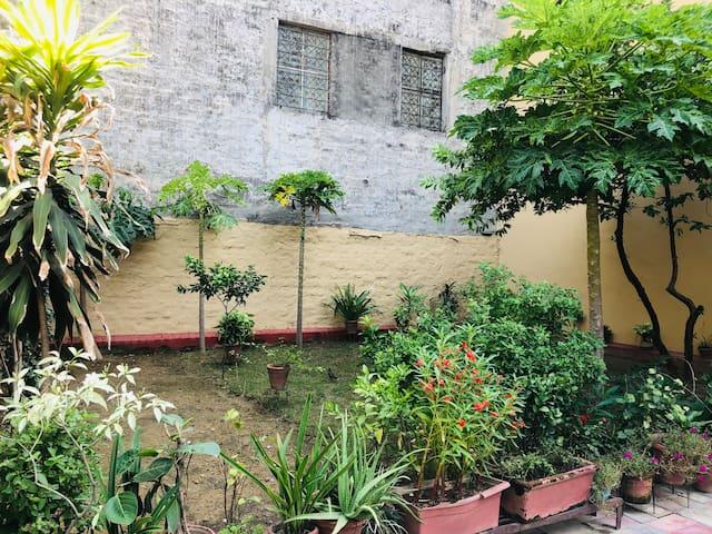 Green Getaway in the heart of Delhi