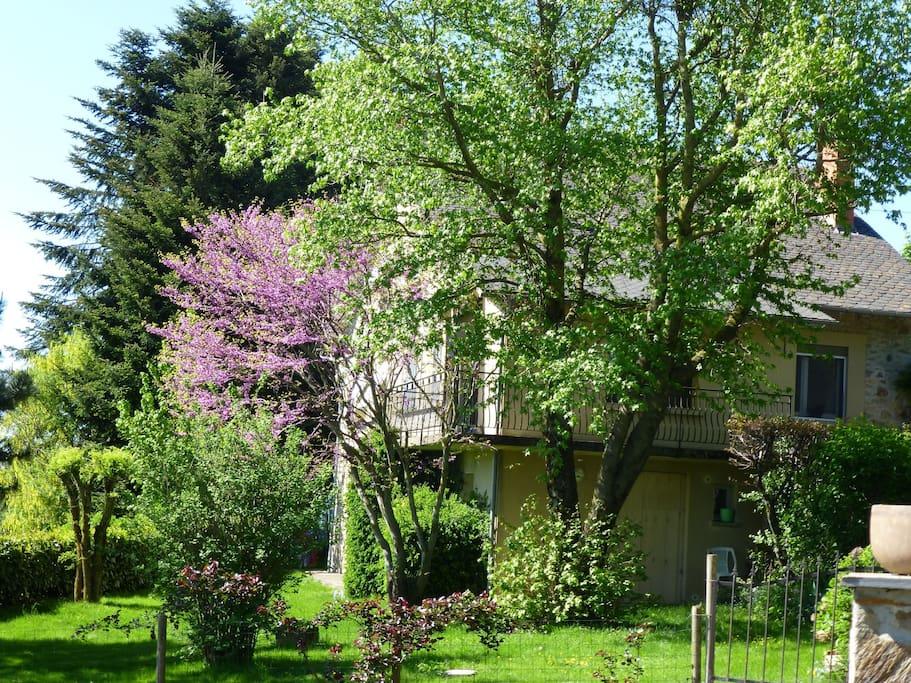 Jardin privatif arboré, avec pelouse