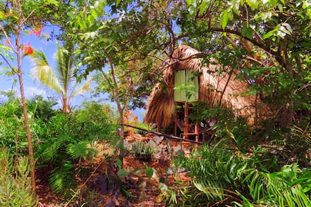 El Cabito treehouse with ocean view - Treehouse