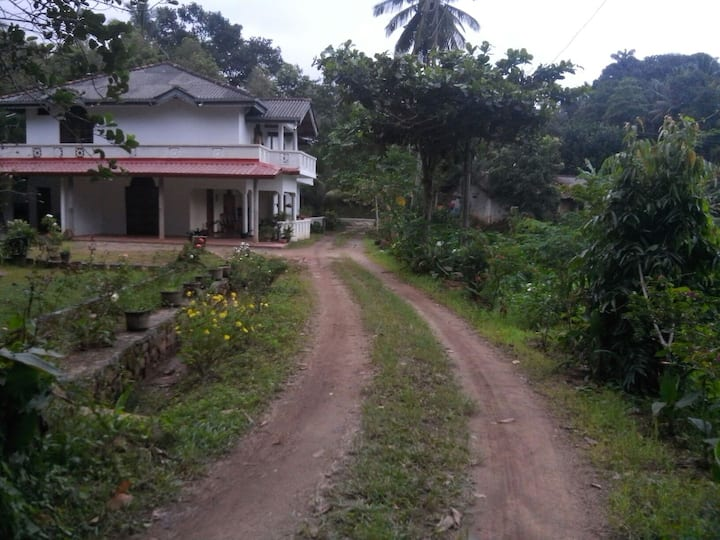 GREEN HILL tea garden home stay kan