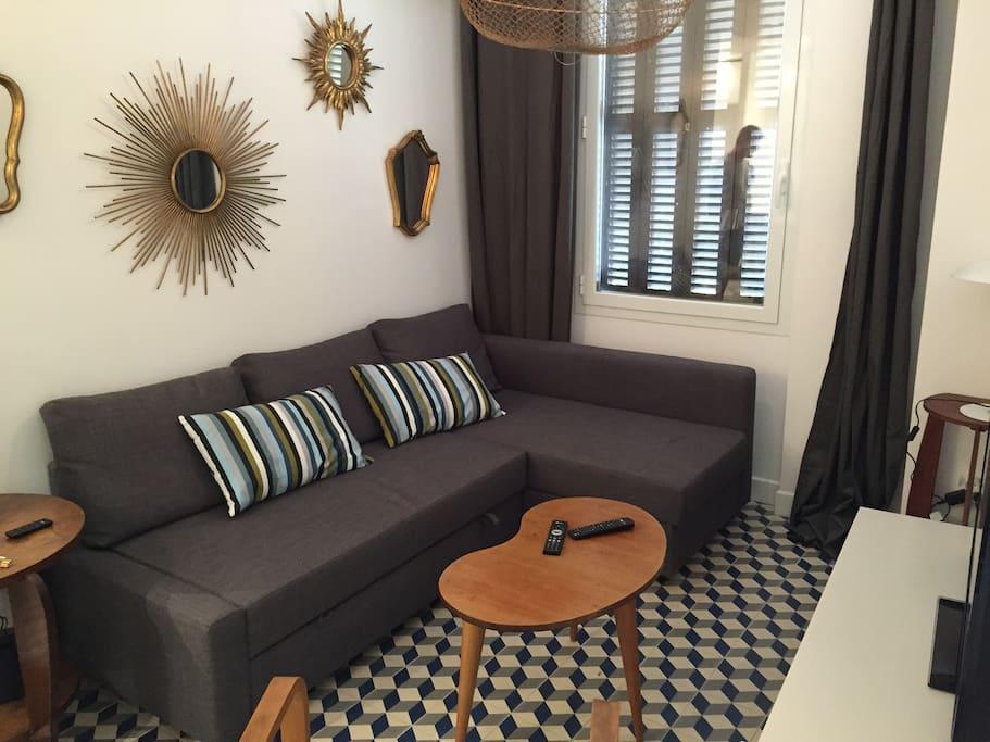 Salon (canapé-lit 2 places, TV, enceinte Wifi)