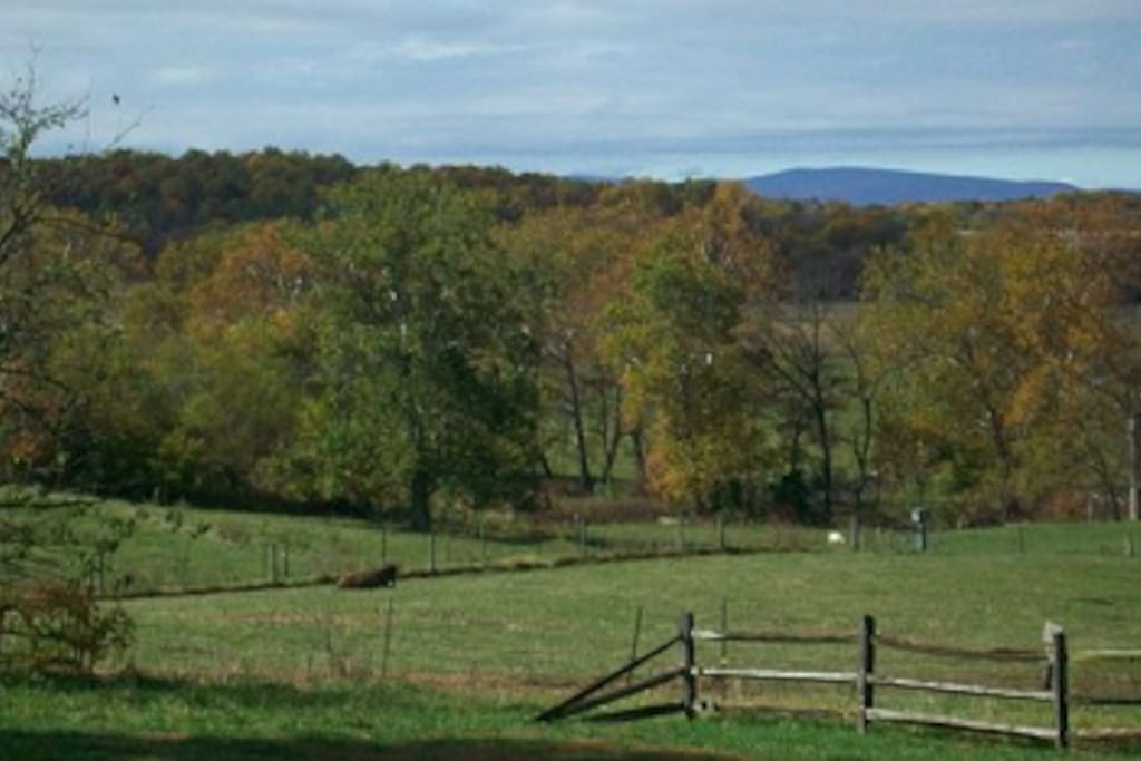 Pastures and mountain view from front porch.